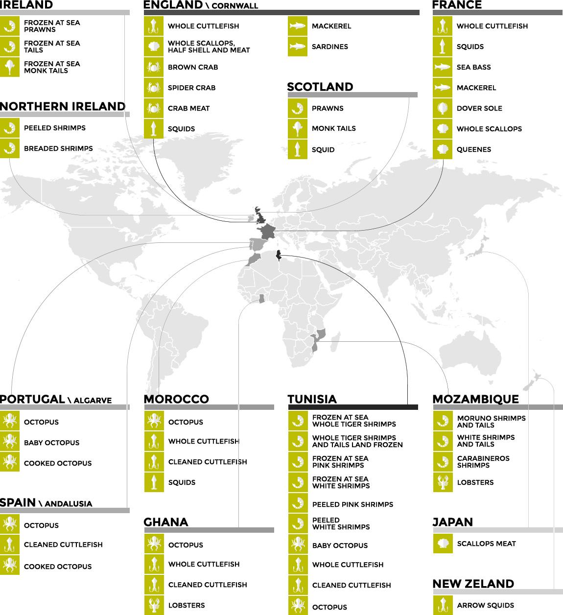infografica_origine_ENG