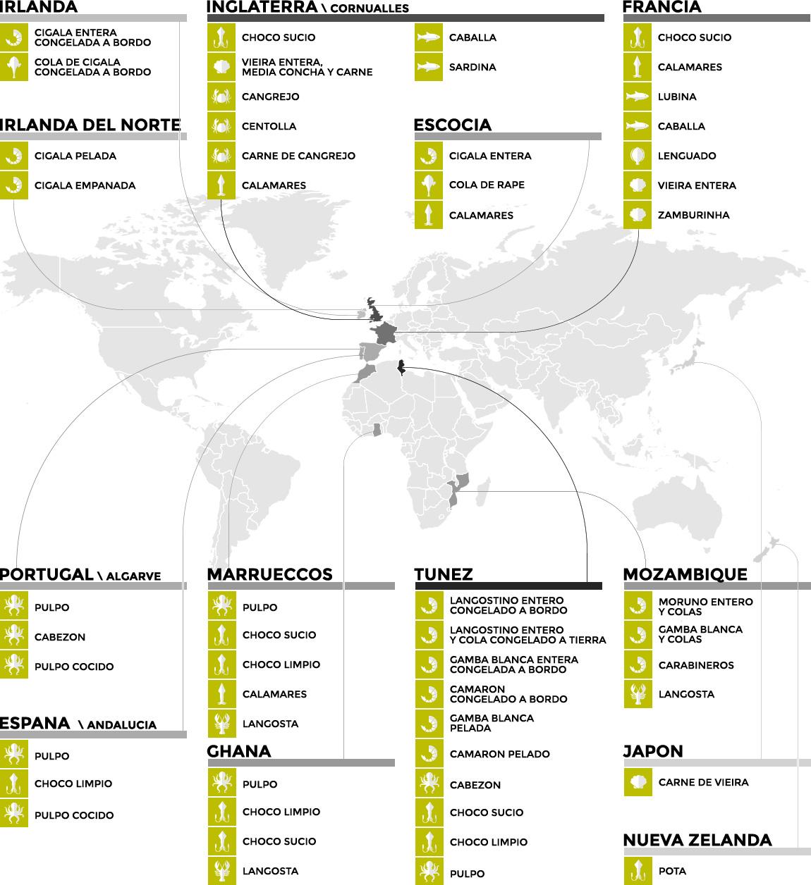 infografica_origine_ESP